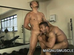 Muscle dudes teasing each others cock